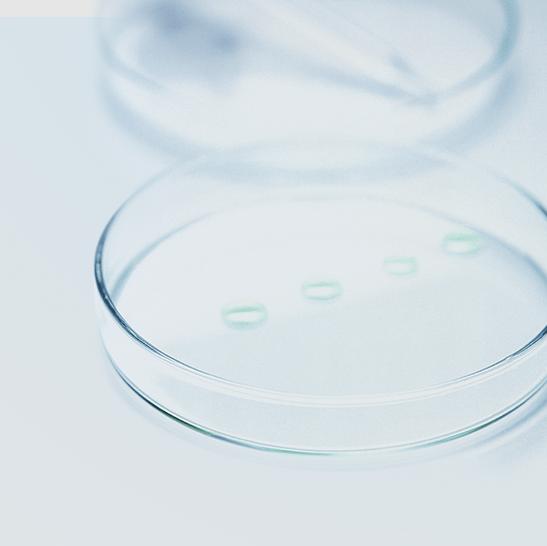 Il DMS contro i batteri
